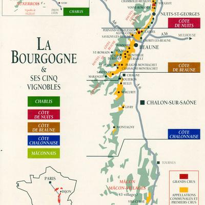 Le vignoble de Bourgogne