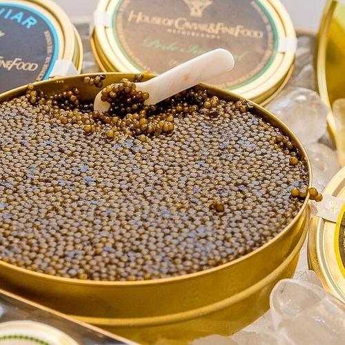 Le caviar 0
