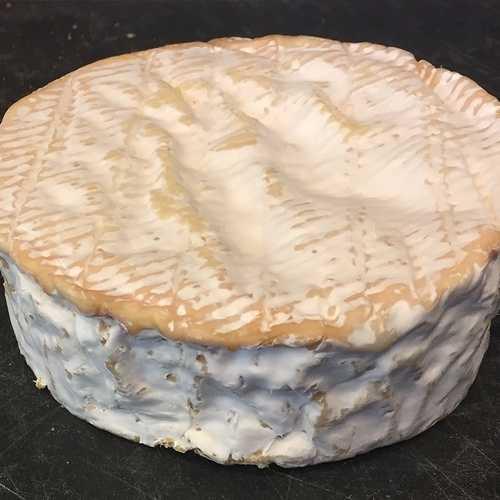 Les fromages à croûte fleurie 0