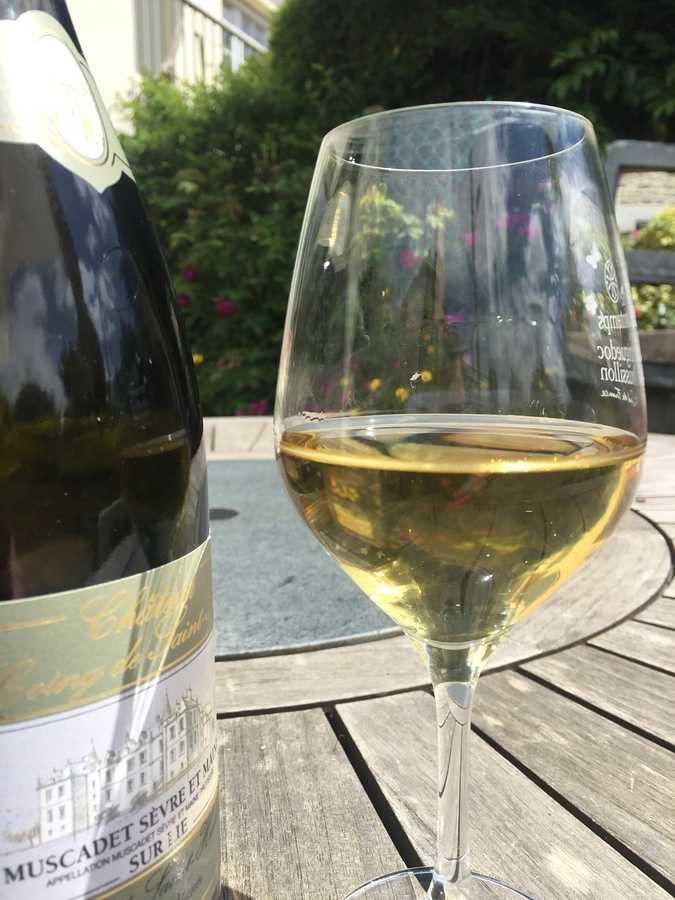 y-a-t-il des tanins dans le vin blanc ?