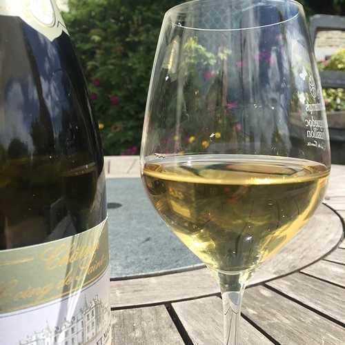 Y-a-t-il des tanins dans le vin blanc ? 0