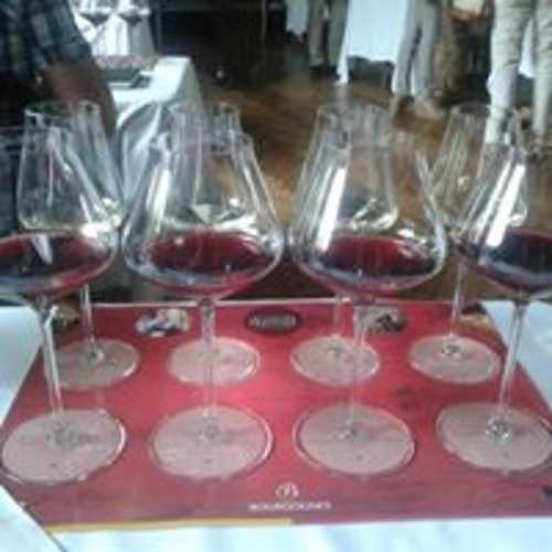 Les Climats du vignoble de Bourgogne 110582683672440467988547557759869799686587n