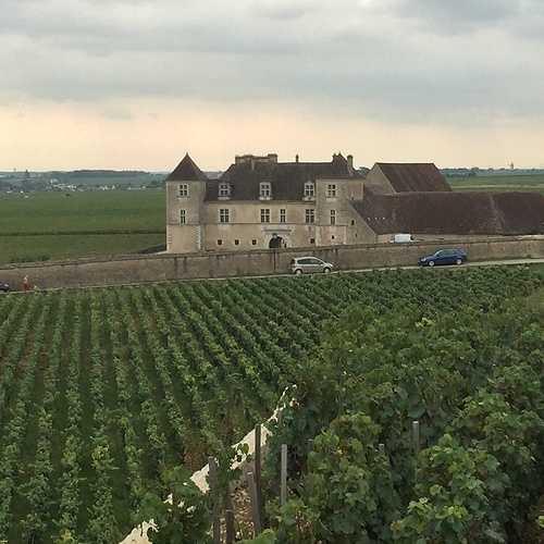 Les Climats du vignoble de Bourgogne img3282