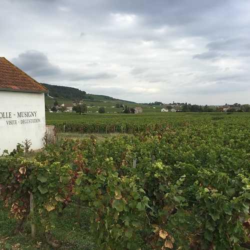 Les Climats du vignoble de Bourgogne 0