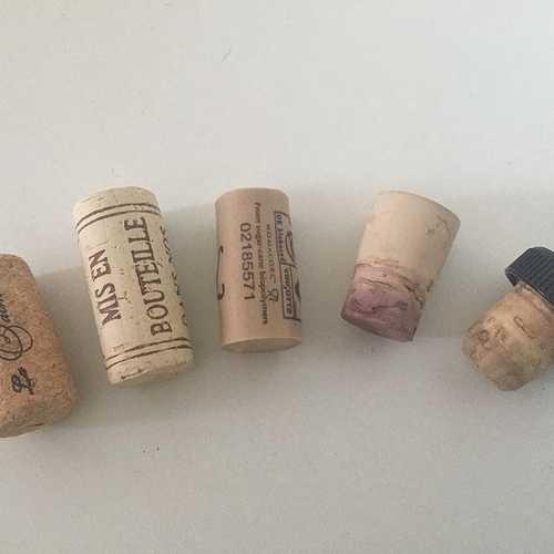 Les bouchons de bouteilles 0