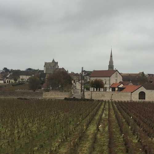 Le christianisme et le vin 0
