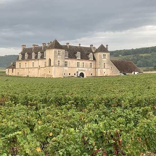"""Chaire UNESCO """"Culture et Traditions du Vin"""" 3cfa8f36-65a7-471d-a179-995d9a4eaaeb1"""