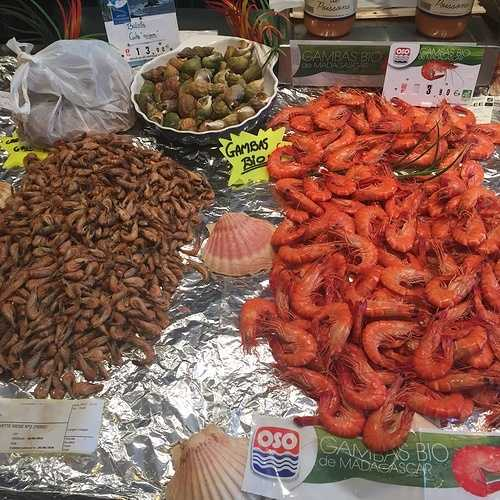 Les crevettes img2047