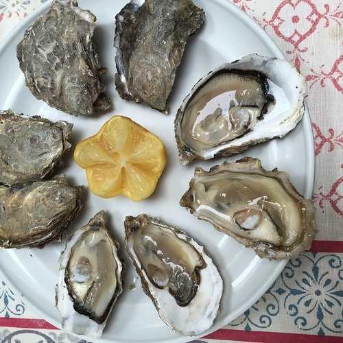 Les huîtres img2123