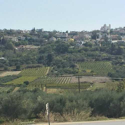 Le vin au fil des siècles img3438